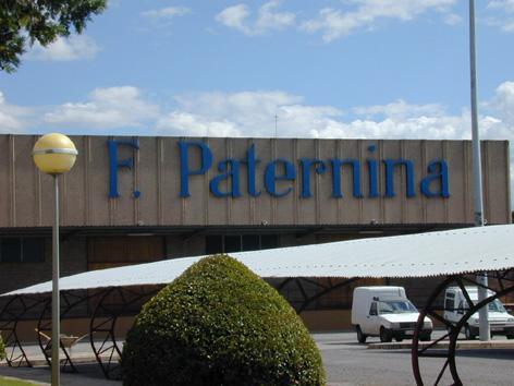 Paternina