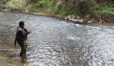 Pesca 50 Aniversario Sociedad Riojalteña