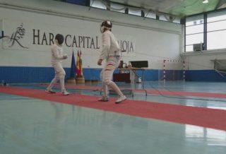 CARTEL HARO ABS 3