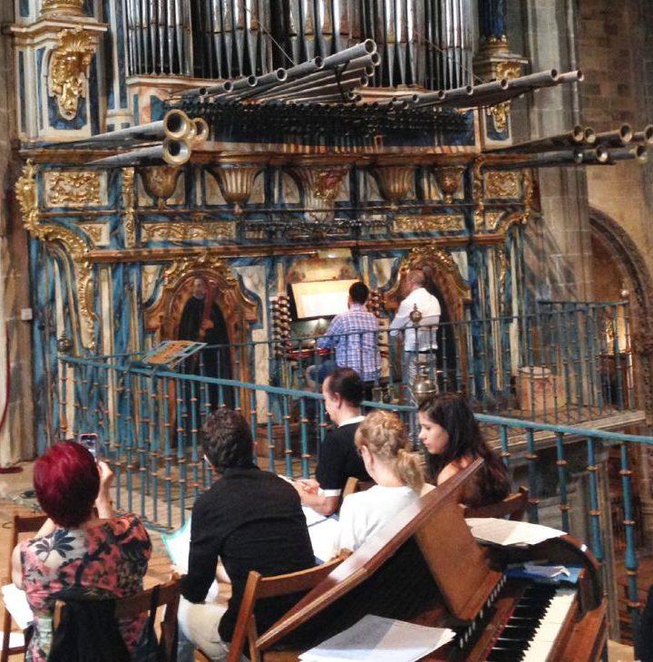 Organo de Briones