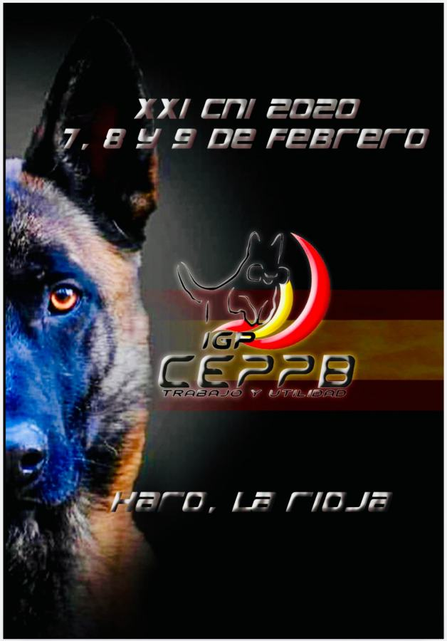 Campeonato Perros Pastor Belga